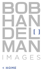 Bob Handelman Website